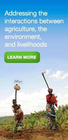 Addressing the interactions between agriculture, the environment, and livelihoods
